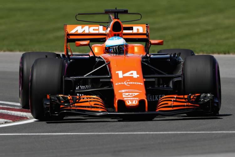 Fernando Alonso+F1+Grand+Prix+Qualifying+w3tlGRFbcg7x